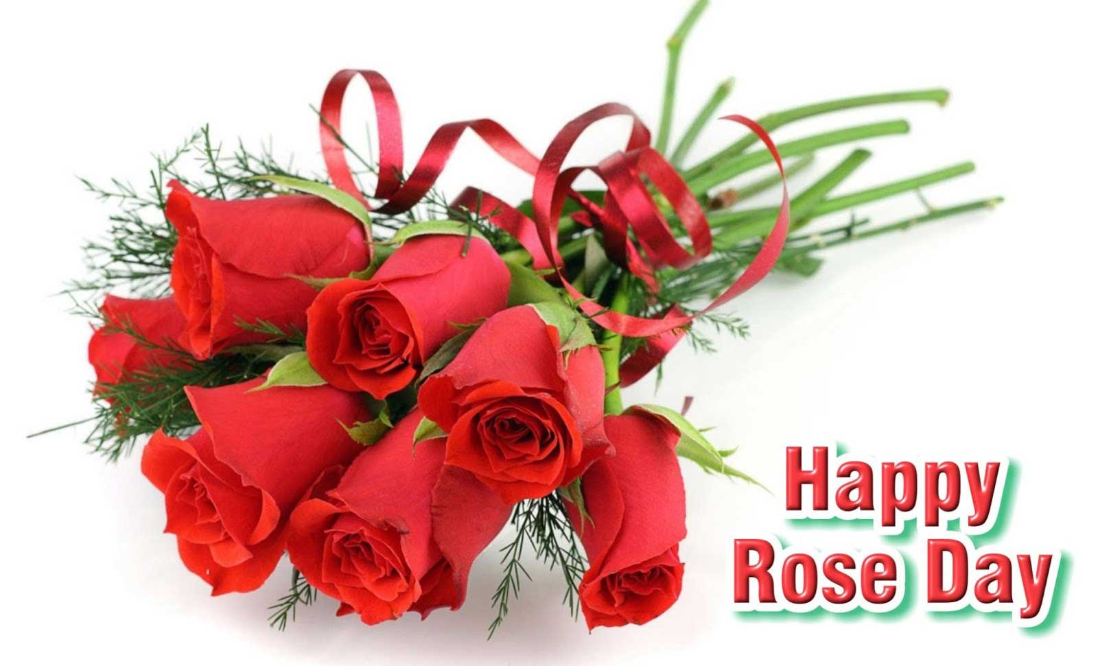 Happy Rose Day 2017 Lovely Wallpaper
