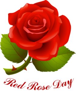 Happy Rose Day 2017 Whatsapp Dp & Profile For GF, BF, Wife, Husband, Crush & Fiance