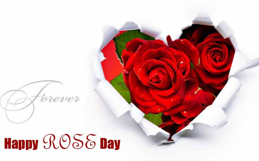Rose Day 2017 Image For Fiance & Friends
