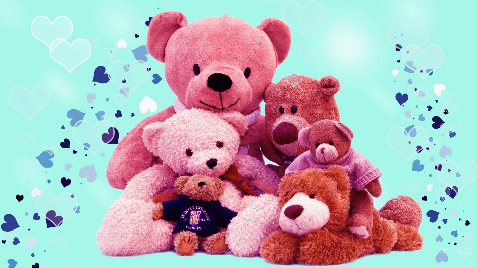 Teddy Bear Day 2017 HD Wallpaper